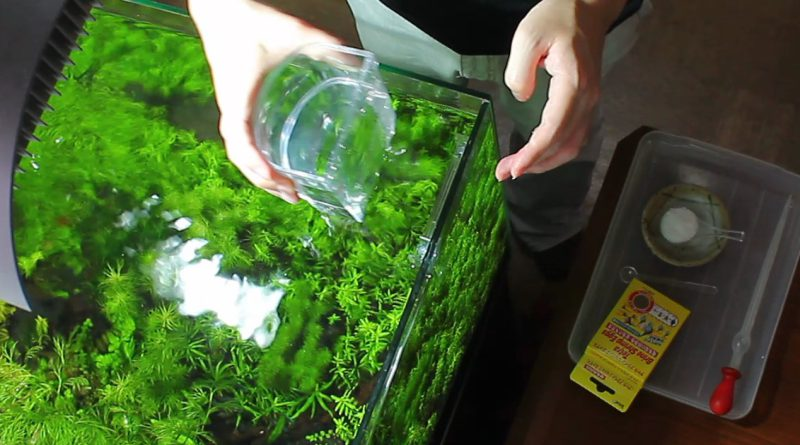 孵化の手順 1.水を入れる