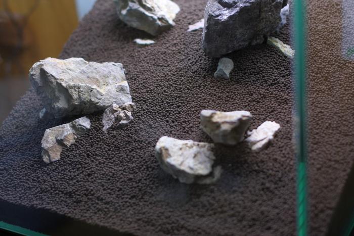 風山石を配置する