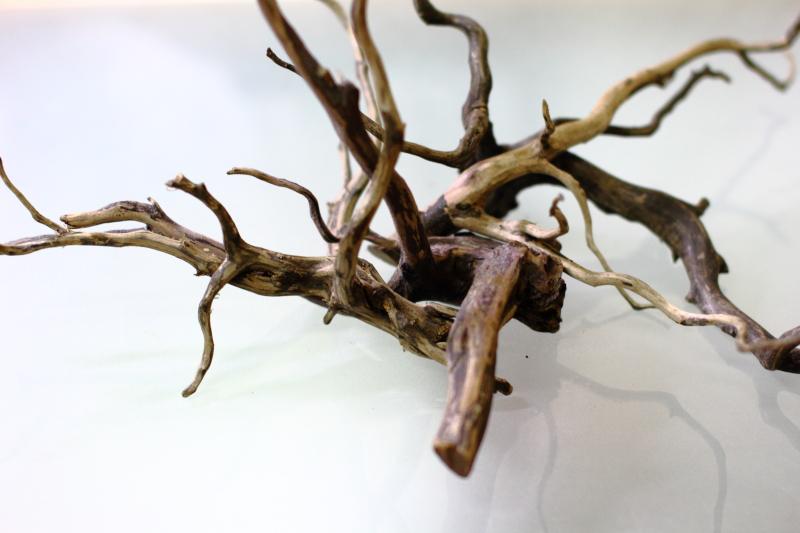 流木・ブラックブランチ