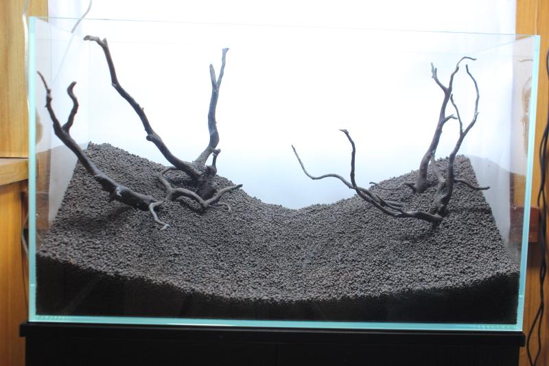 流木の配置