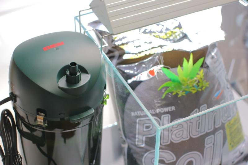 【初心者向け】30センチ水槽で作るお洒落な水草レイアウトの器具選び